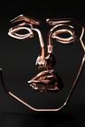 Many Faces by Disclosure