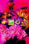 #01 FLOWER BOUQUET [YATS 50] by Skye Nicolas